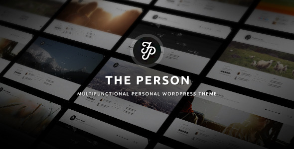 The Person | Multi CV, Portfolio, Blog, Resume (Personal)